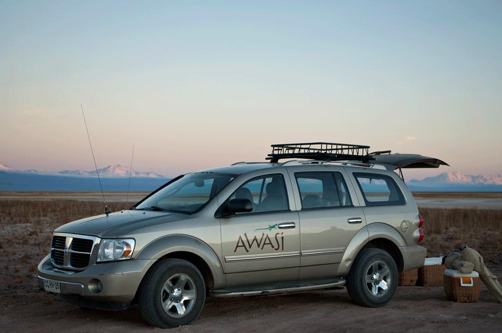 Awasi-Atacama-(16).png