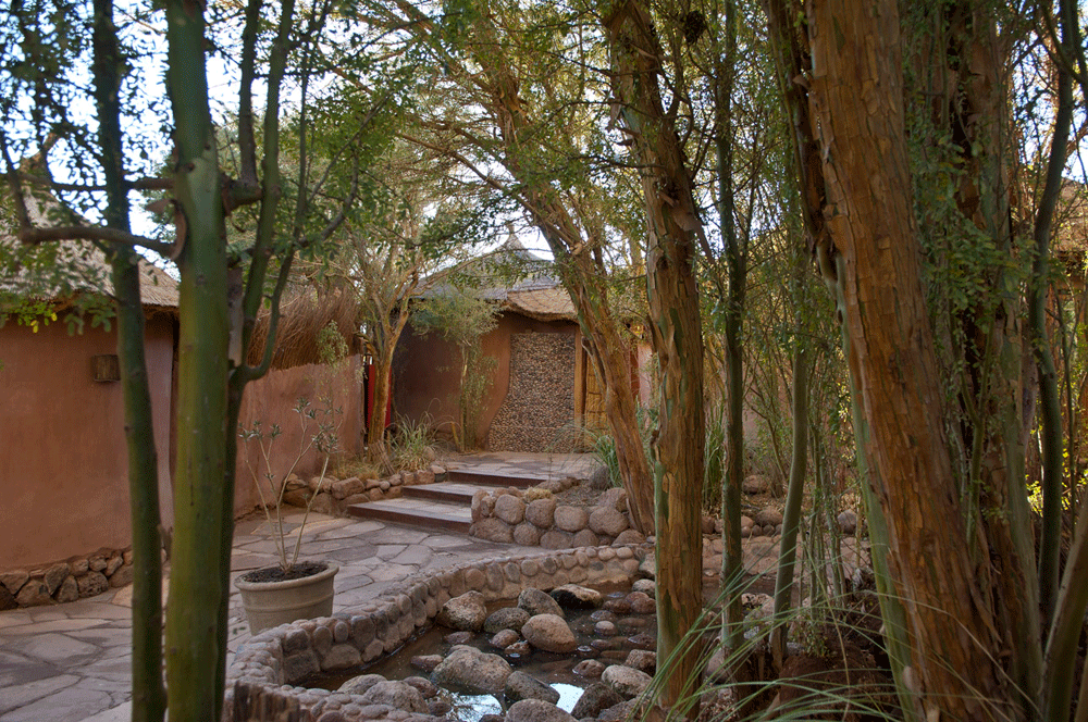 Awasi-Atacama-(23).png