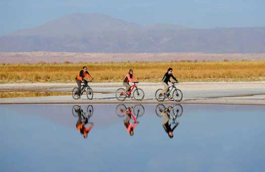 Cycling through the Atacama landscape (photo: Explora)