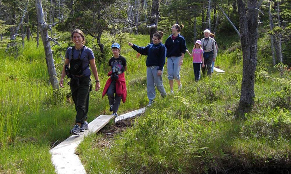 Alaska wilderness walk