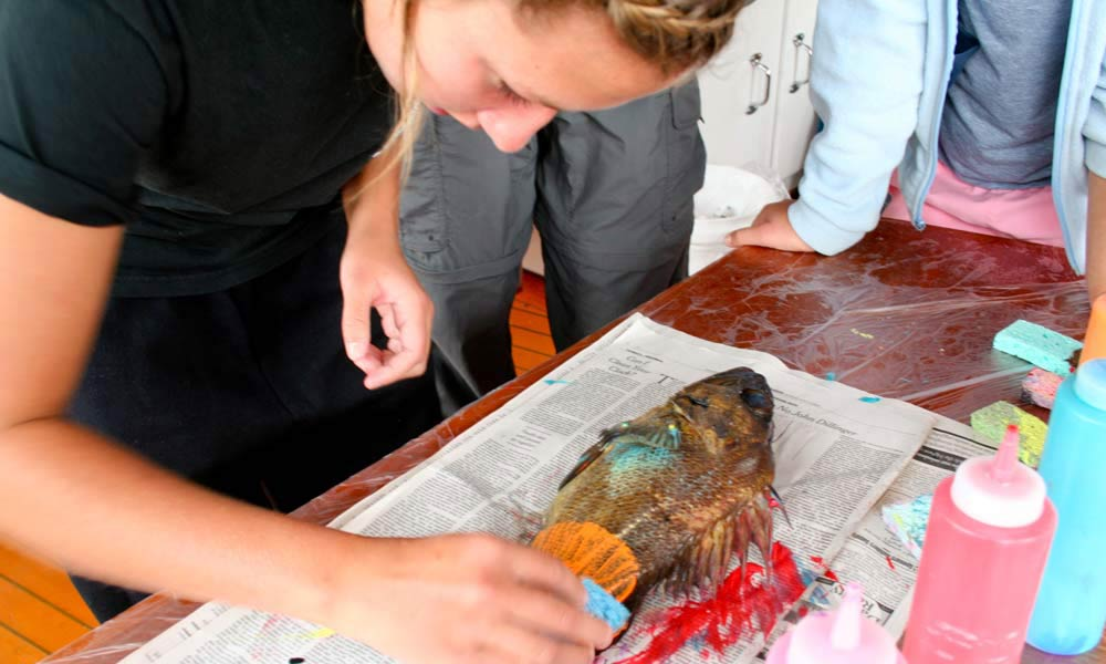 Learning the Japanese art of fish printing