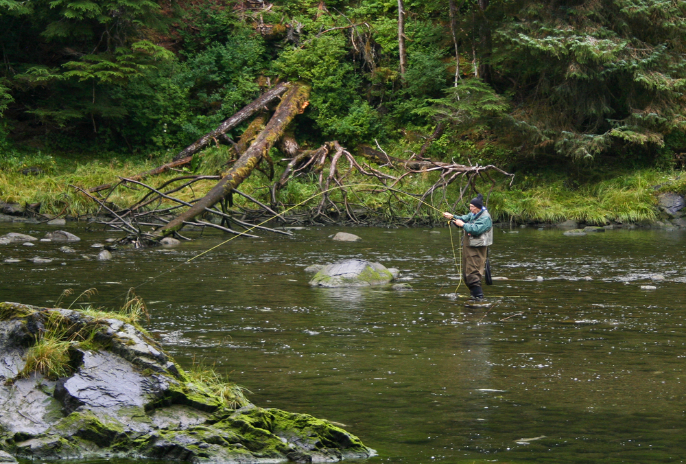 Fly-fishing in trout streams.