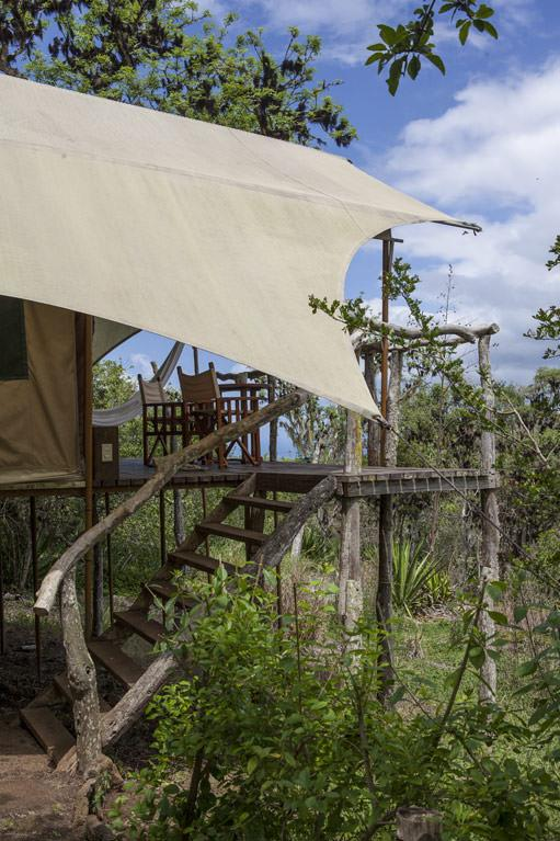 Galapagos Safari Camp in the lush highlands of Santa Cruz Island.