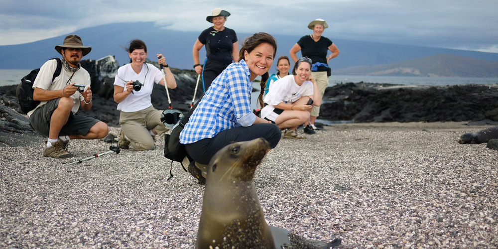 Shore visit at Punta Espinoza, Fernandina entertained by a gregarious sea lion pup.  Photo: Philip Yip.