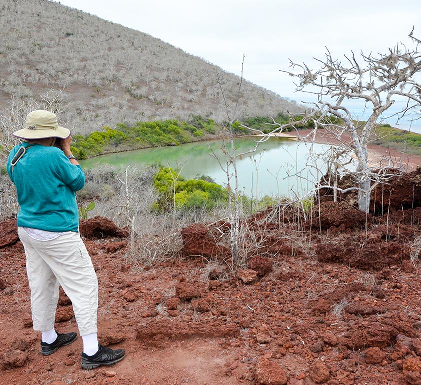 Phyllis on Rabida Island, 2016