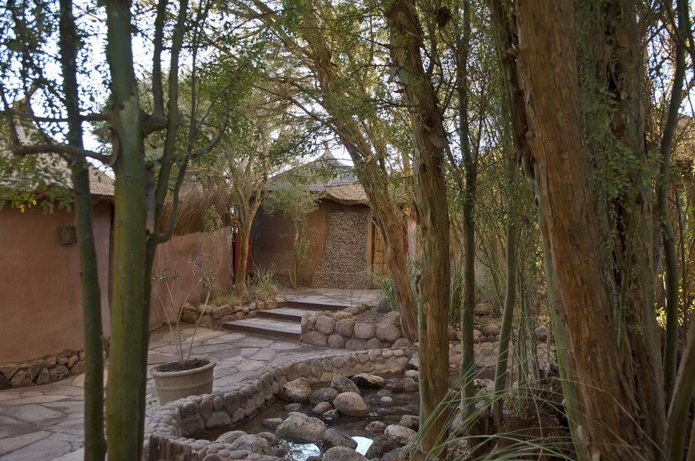 Awasi Atacama (23).jpeg