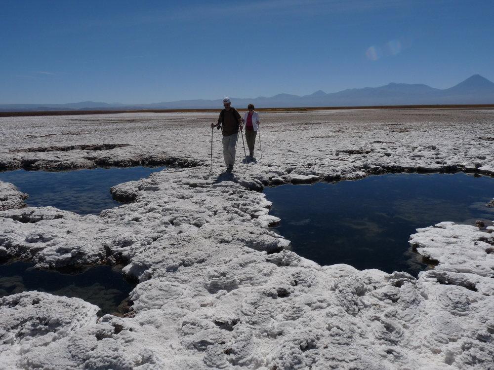 Awasi Atacama (48).jpeg
