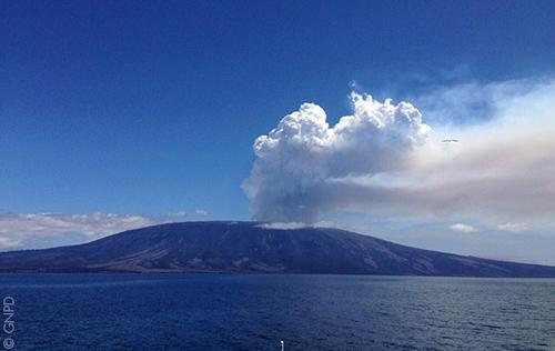 La Cumbre, Fernandina. Photo ©Galapagos National Park