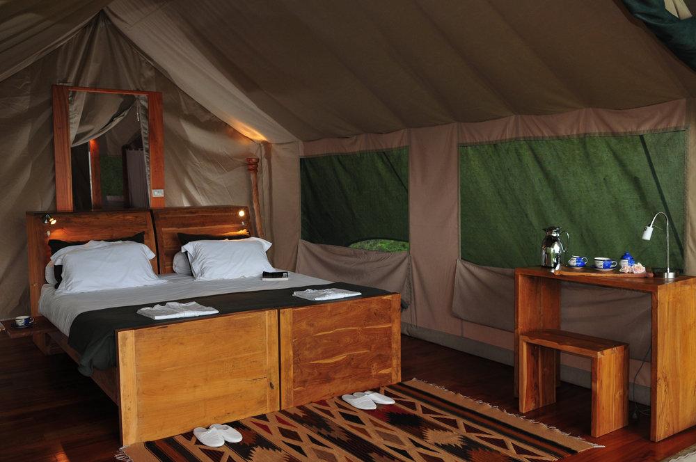 4 tent interiors 8  dsc_4703.jpeg
