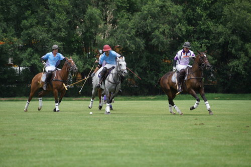 Aspen Valley Polo Club's Lucas Lalor hits .JPG