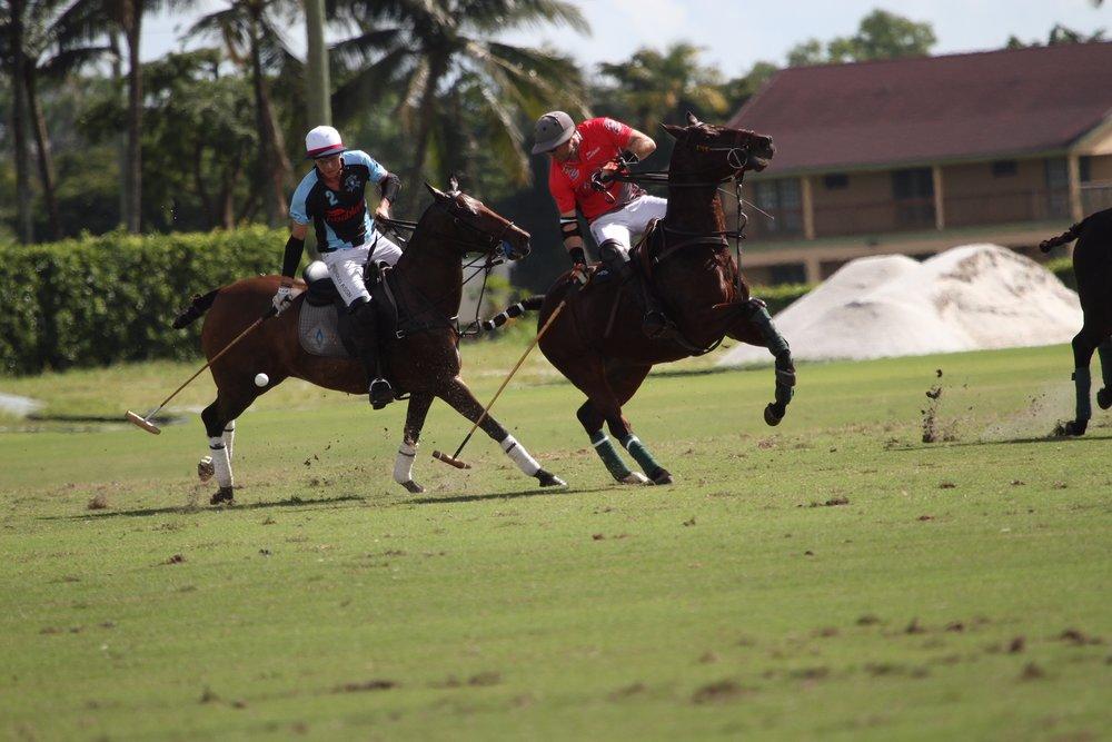 Juancito Bollini of Casablanca hits th.JPG