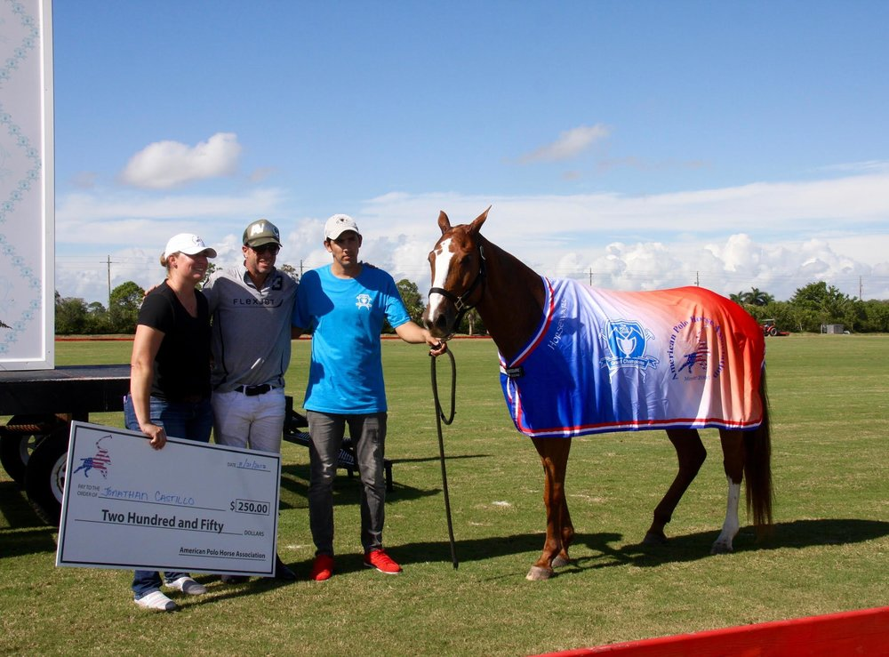 American Polo Horse Association .SA.jpg