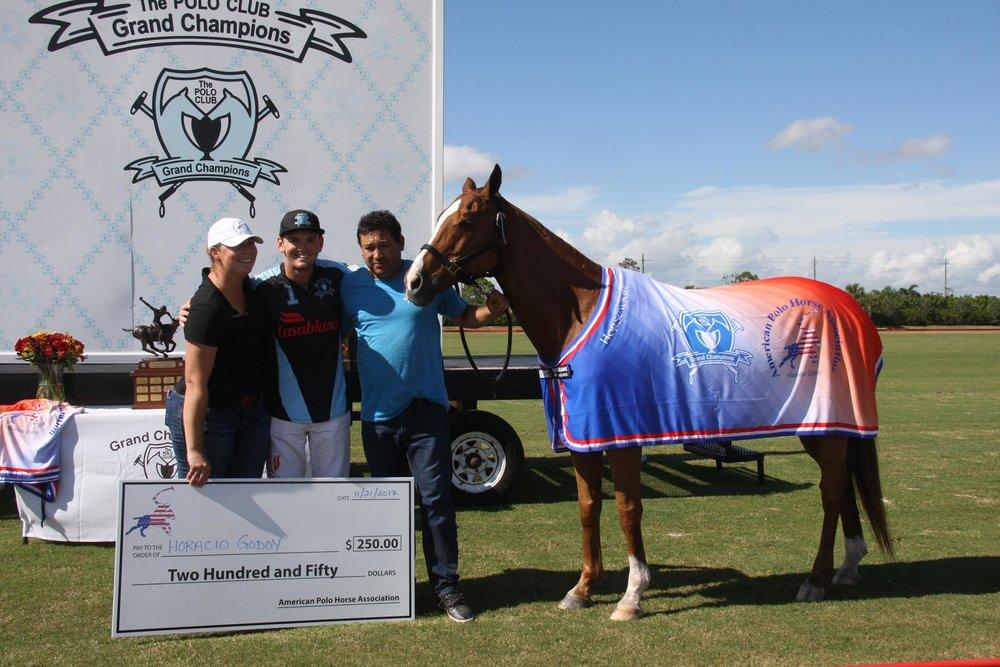 American Polo Horse Association.SA.jpg