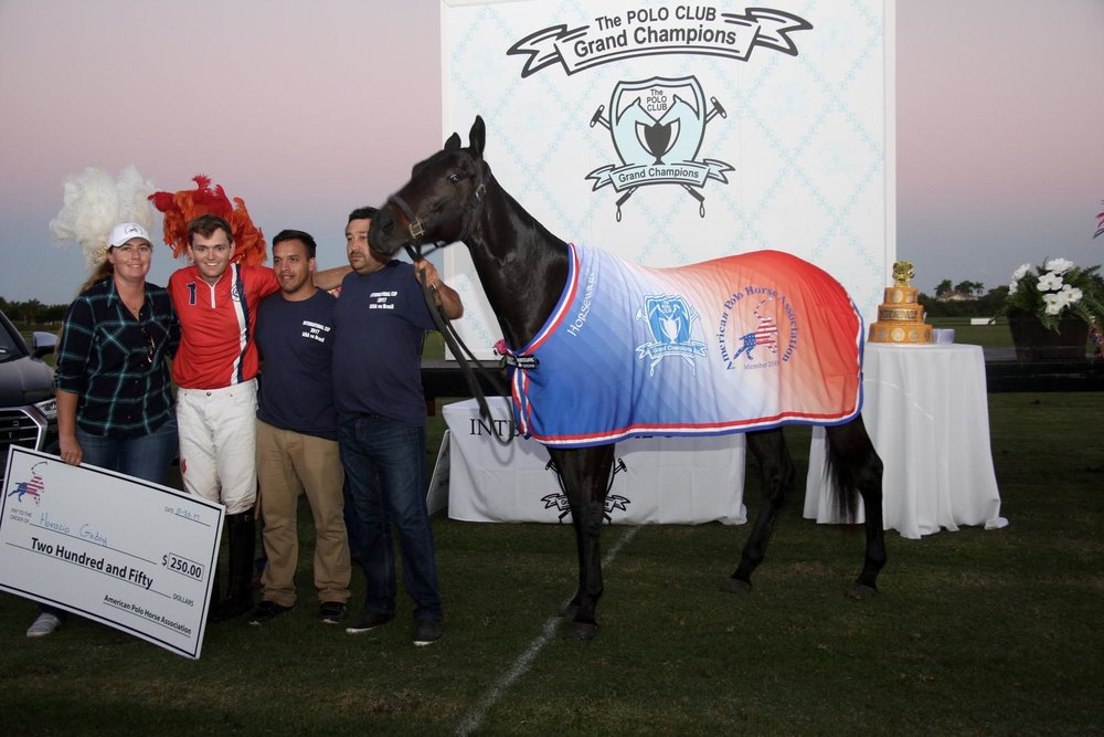 American Polo Horse Association Best.SA.jpg
