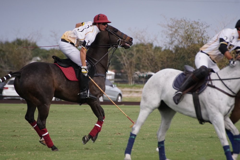 Gringo Colombres of Palm Beach Equine drives.JPG