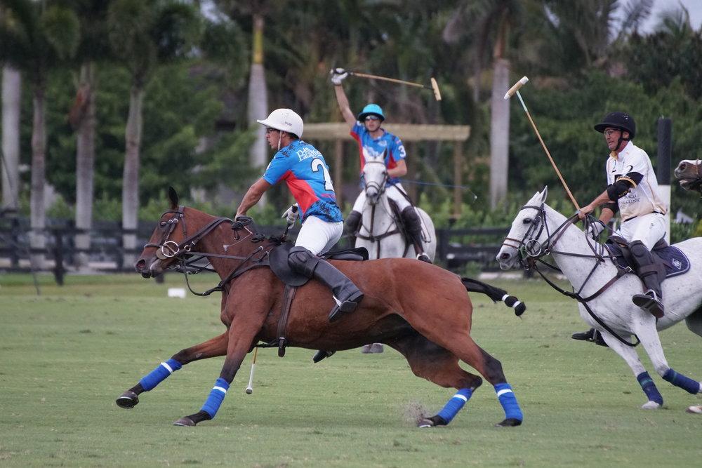 Scott Swerdlin of Palm Beach Equine chasing.JPG