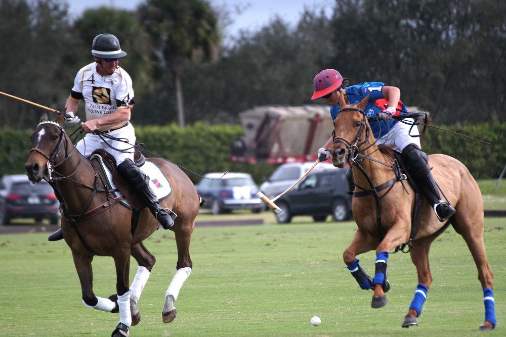 Scott Swerdlin of Palm Beach Equine close.JPG