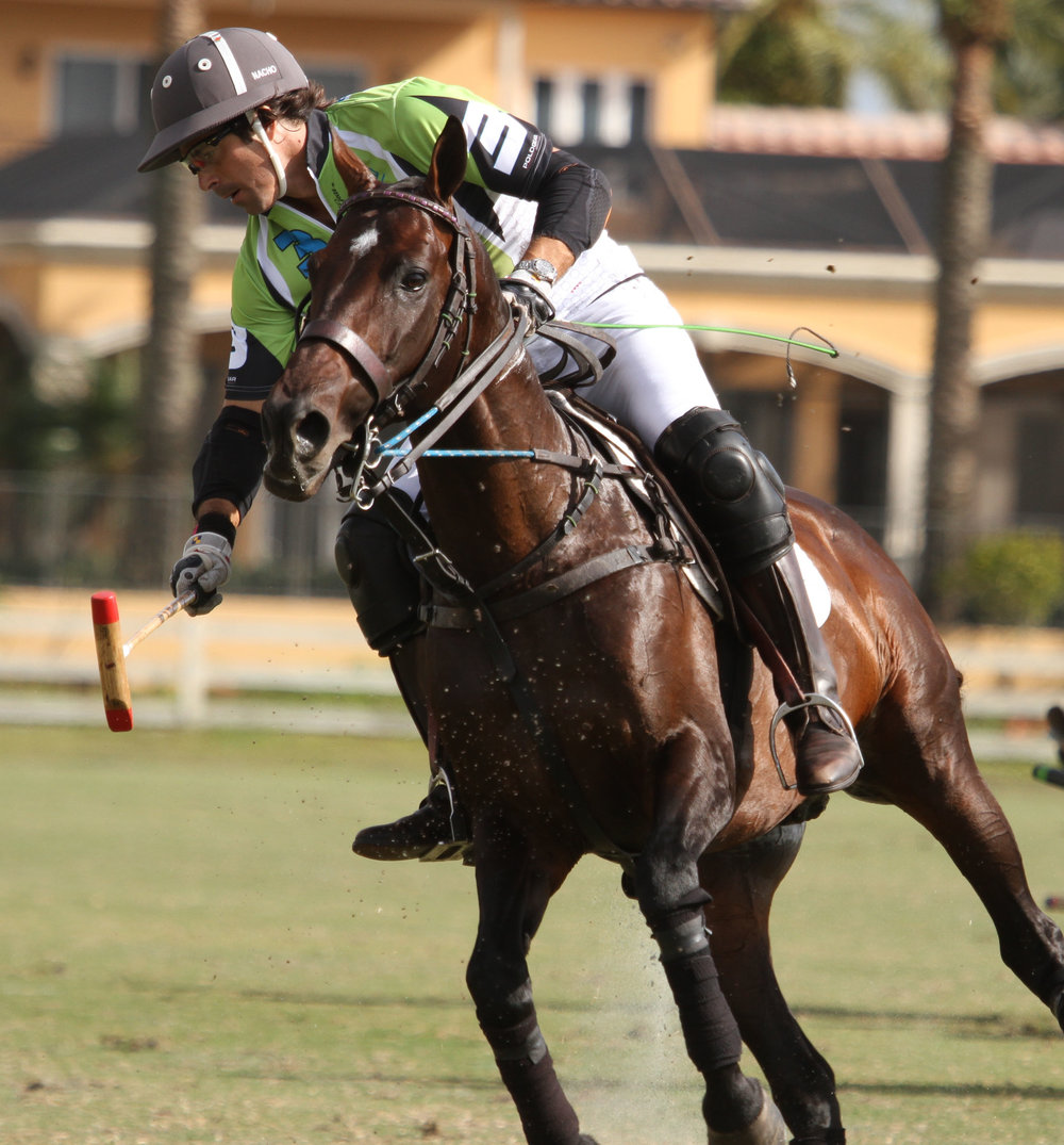 Crowd pleaser Nacho Figueras takes possession of the ball..jpg