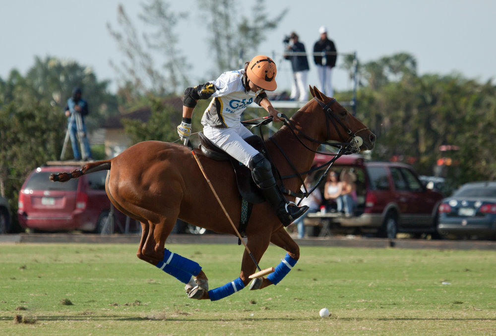 GSA team captain Toro Ruiz works the ball downfield as his horse takes flight.
