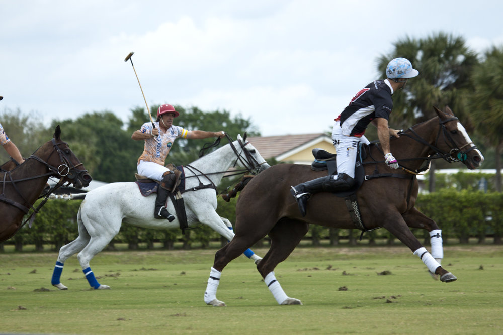 3-10-2018 Nico Pieres of Audi with the big neck shot.JPG