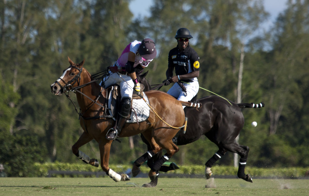 3-9-2018-Tolito Ocampo of Beverly Equestrian hits.JPG