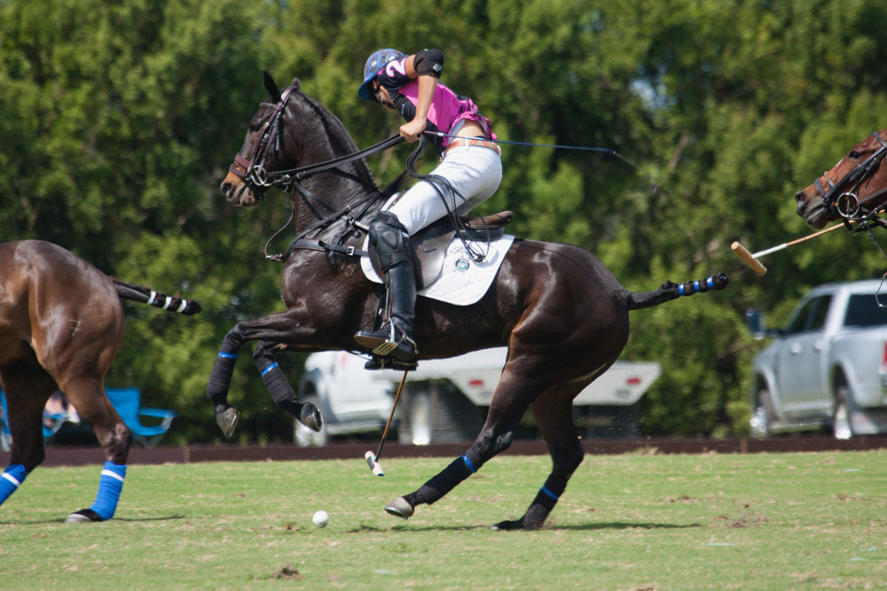 Hilario Figueras of Beverly Equestrian works.JPG