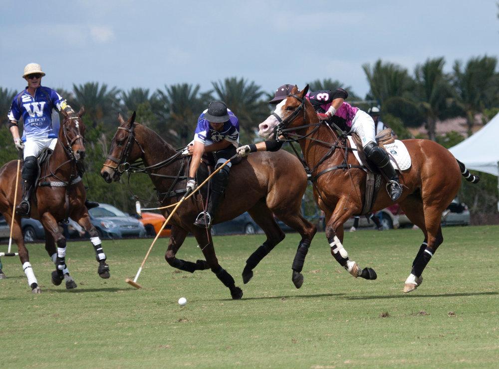 Tolito Ocampo of Beverly Equestrian hooks.JPG