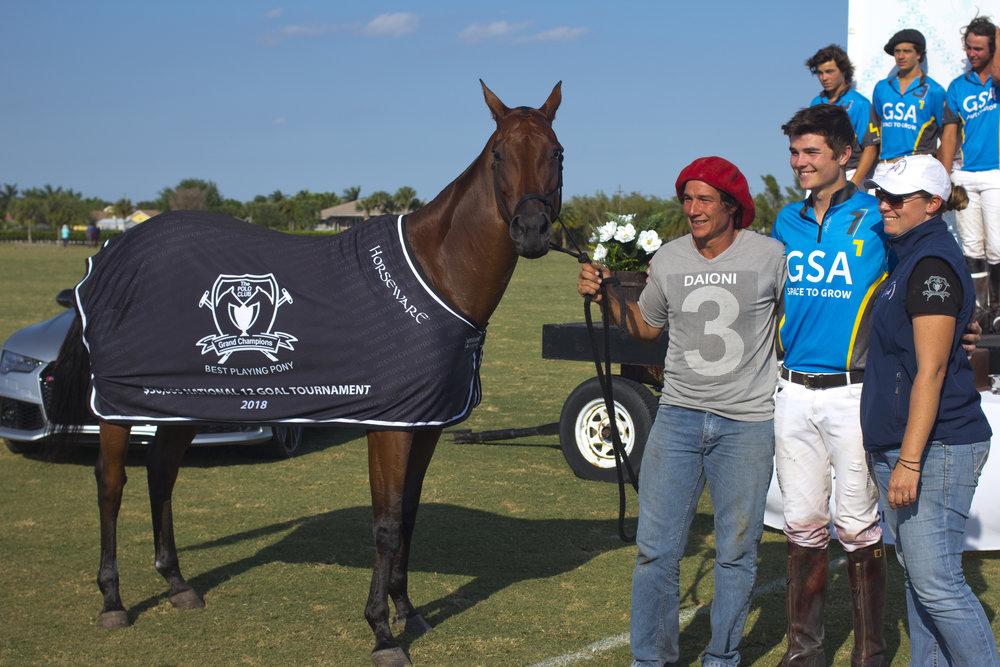 Grand Champions Best Playing Pony of the tournamen.JPG