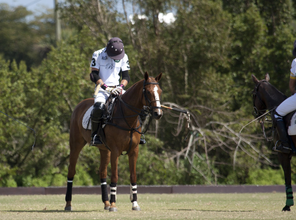 Tolito Ocampo of Beverly Equestrian during .JPG