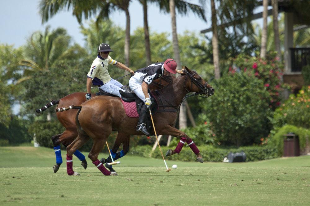 Gringo Colombres of Palm Beach Polo:Palm Beach .JPG