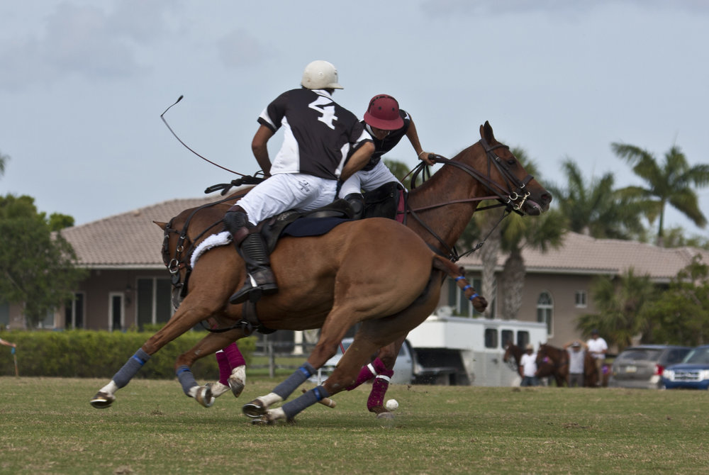 3-31-2018-Gringo Colombres of PB Polo:PB Equine drive.JPG
