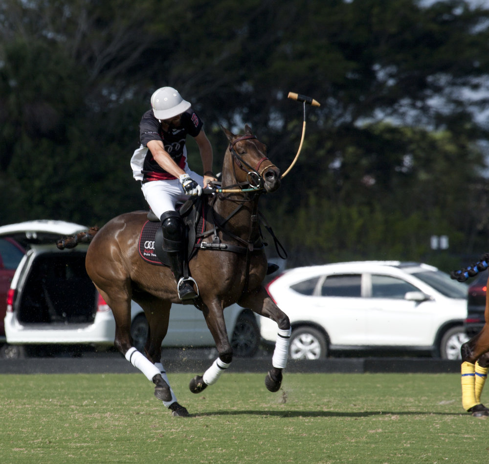 Polito Pieres of Audi goes for the big neck shot..JPG
