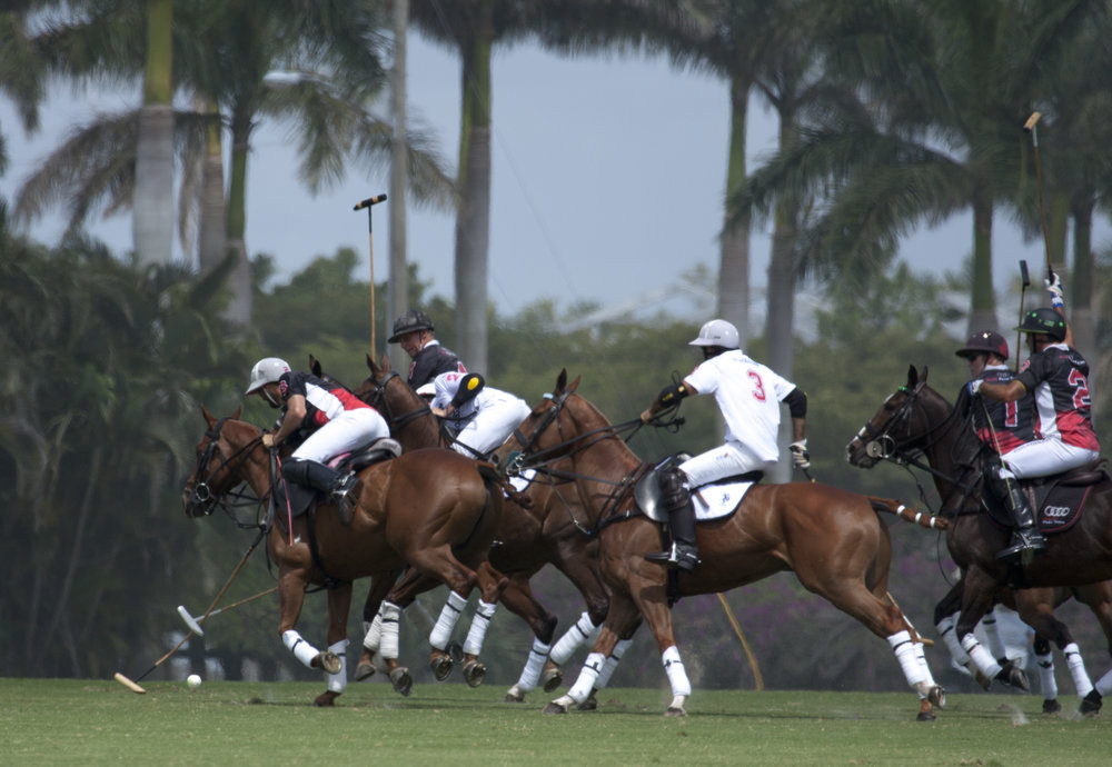 Audi teammates Polito Pieres and Mike Azza.JPG
