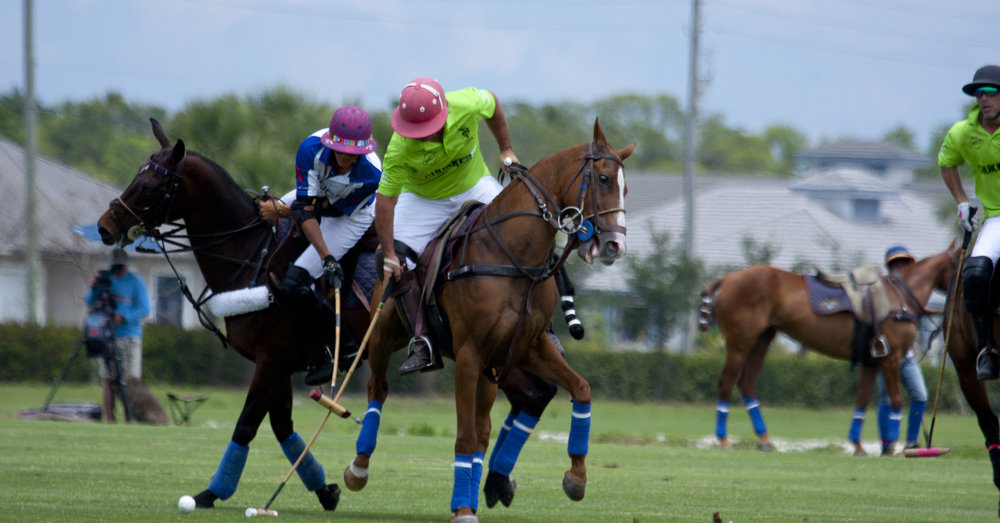 Piki Alberdi of Chukker TV tries to hook .JPG