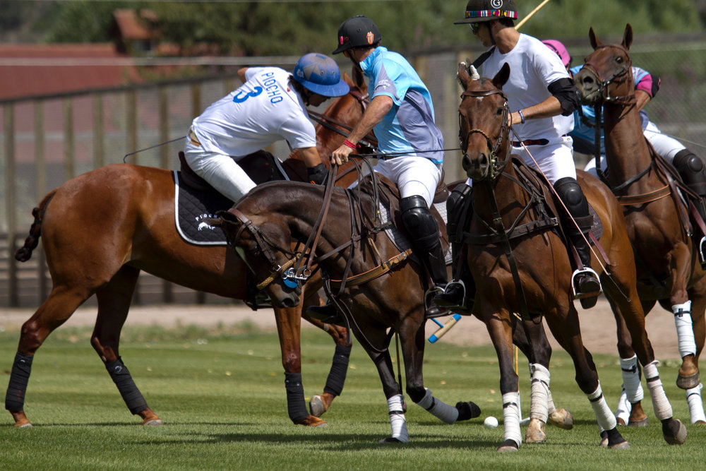 MVP Nacho Figueras of Piocho works the ba. JPG.JPG