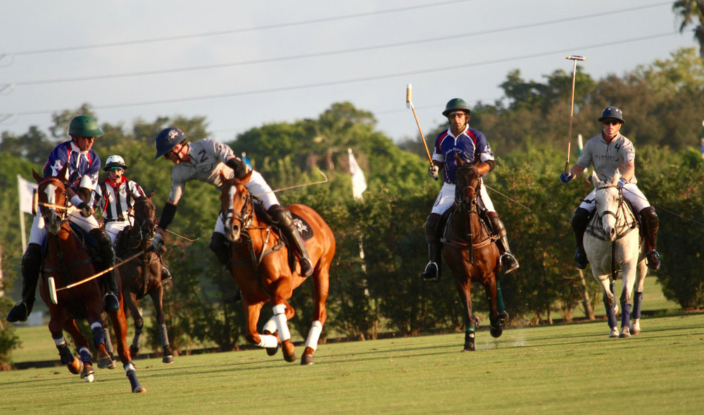 Jeff Hall of American Polo Horse go.jpg