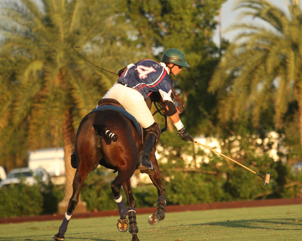 Jeff Hall of American Polo Horse reache.jpg