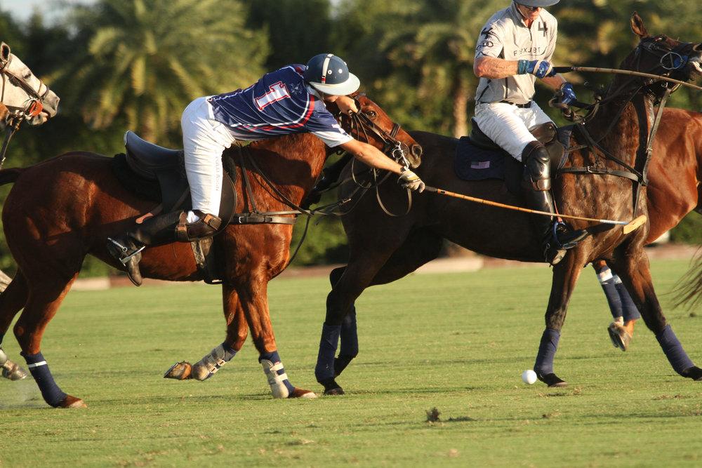 Justin Daniels of American Polo Horse st.jpg