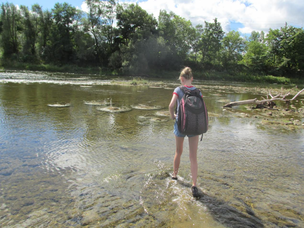 Sophie stepping out into the Grand River.