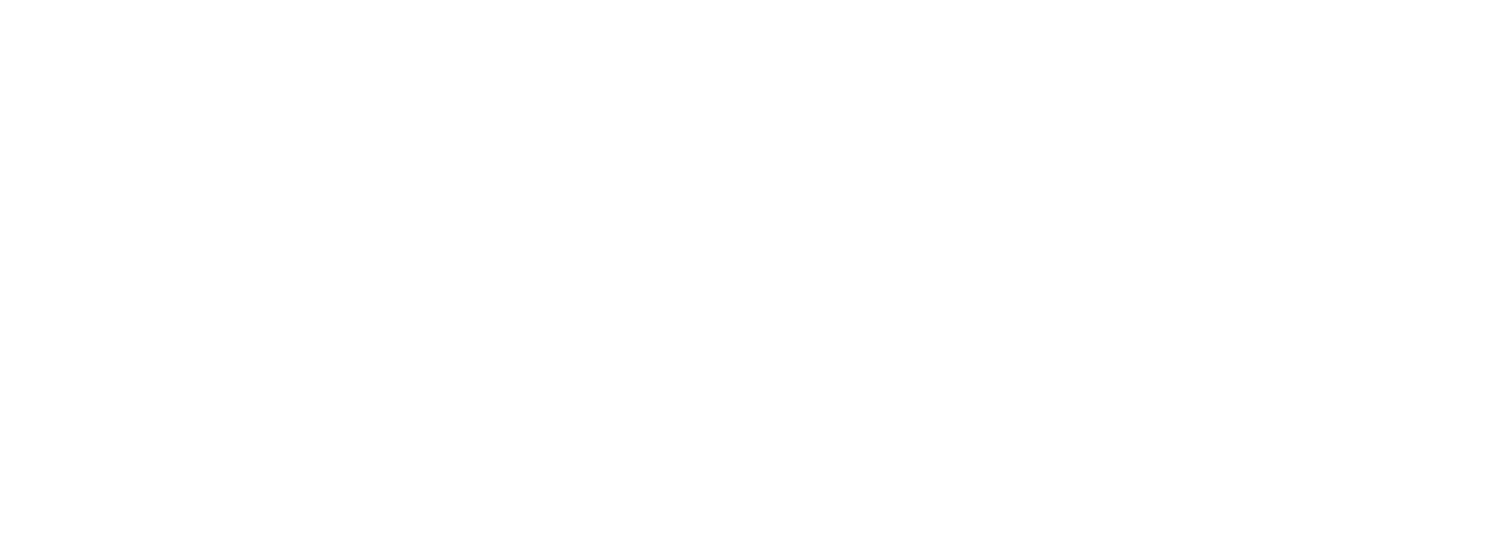BRIDGING THE GAP AFRICA
