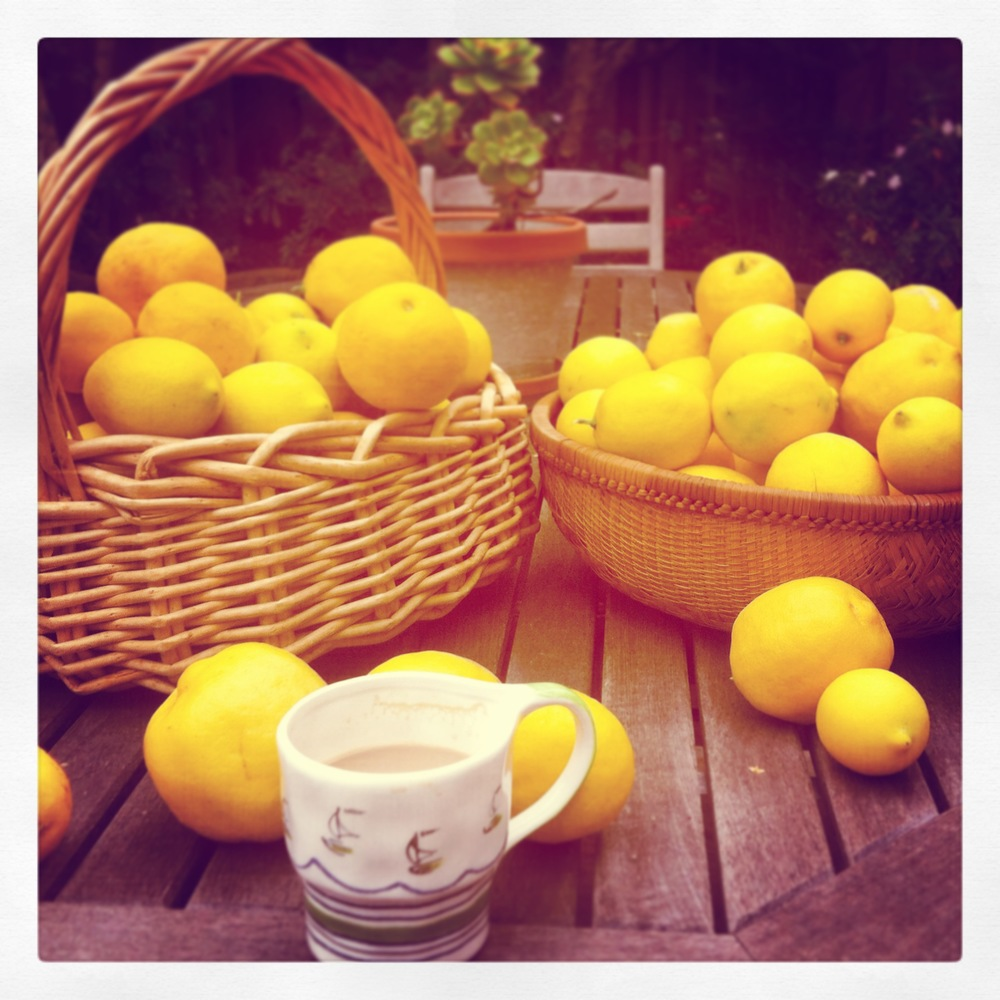 Fresh lemons - the best.