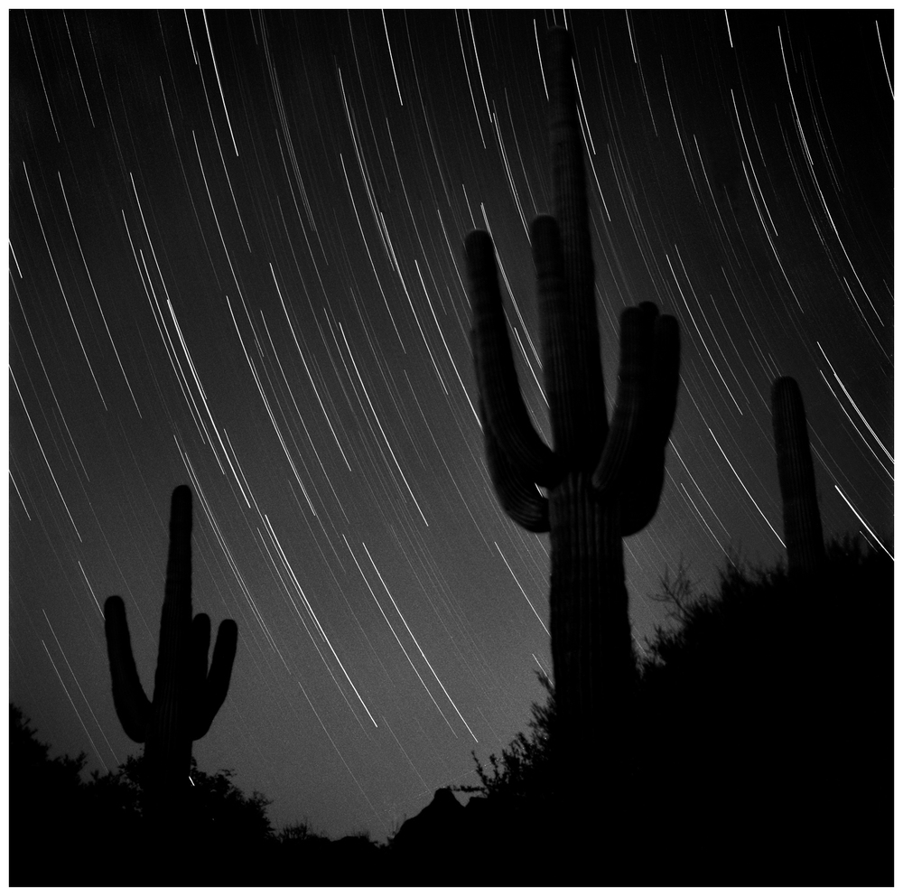 Star Tracks Over Saguaros