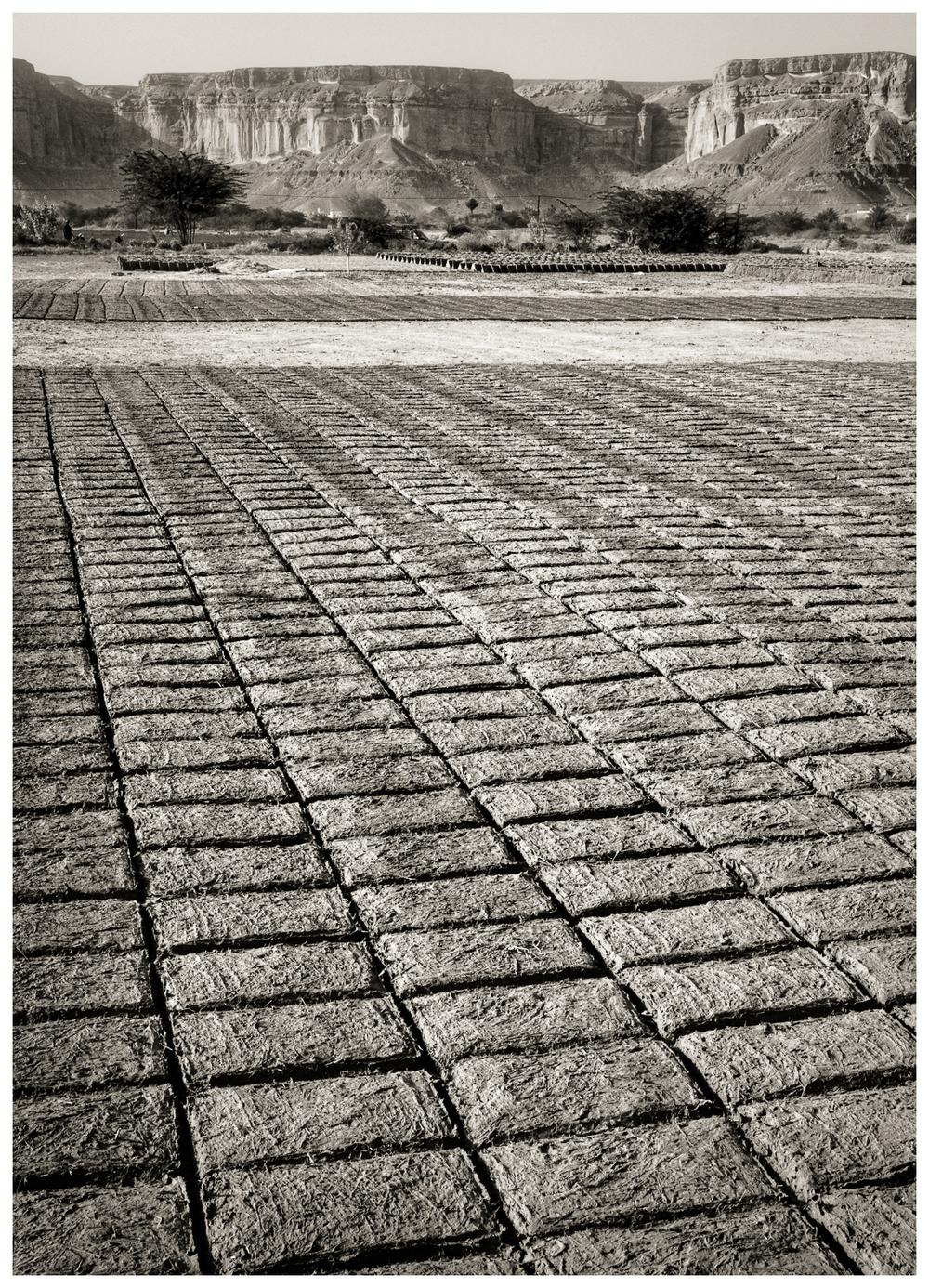 23Drying Bricks in the Wadi HadhramautWadi Hadhramaut Drying Bricks_DSC4897.jpg