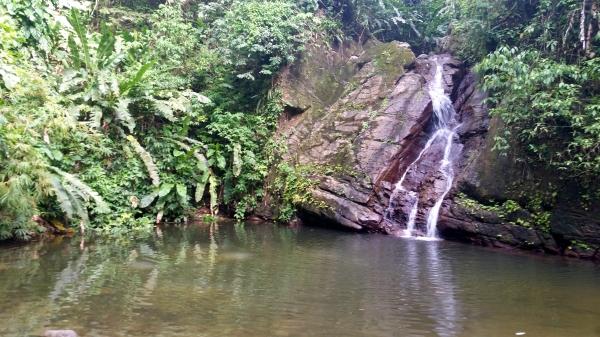 Castara Falls