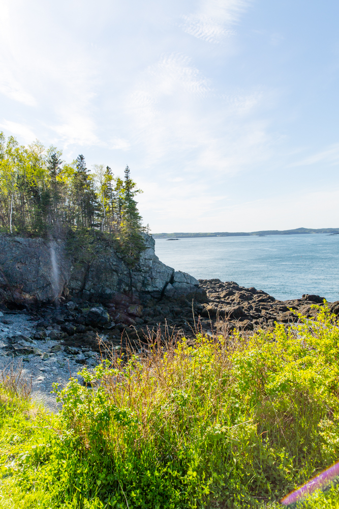 New Brunswick Canada Travel Guide Blogger from Abby Capalbo
