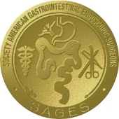 SAGES Metal Logo.jpg