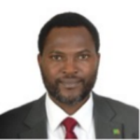 EMANUEL MAKASA, BSC.HB, MBCHB, MPH, M.MED (ORTHO)    Counselor of Health for the Permanent Mission of the Republic of Zambia to the UN