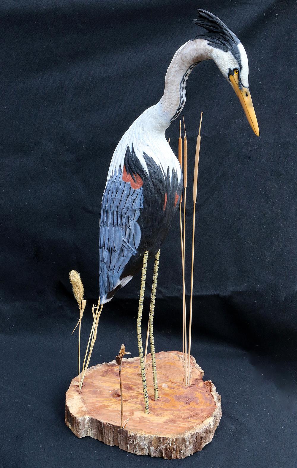 Ken's Heron.jpg