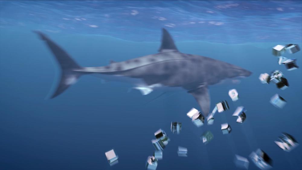 SharkGlide_REV_3_noURL#1-QuickTime H.264 (0-00-09-16).jpg