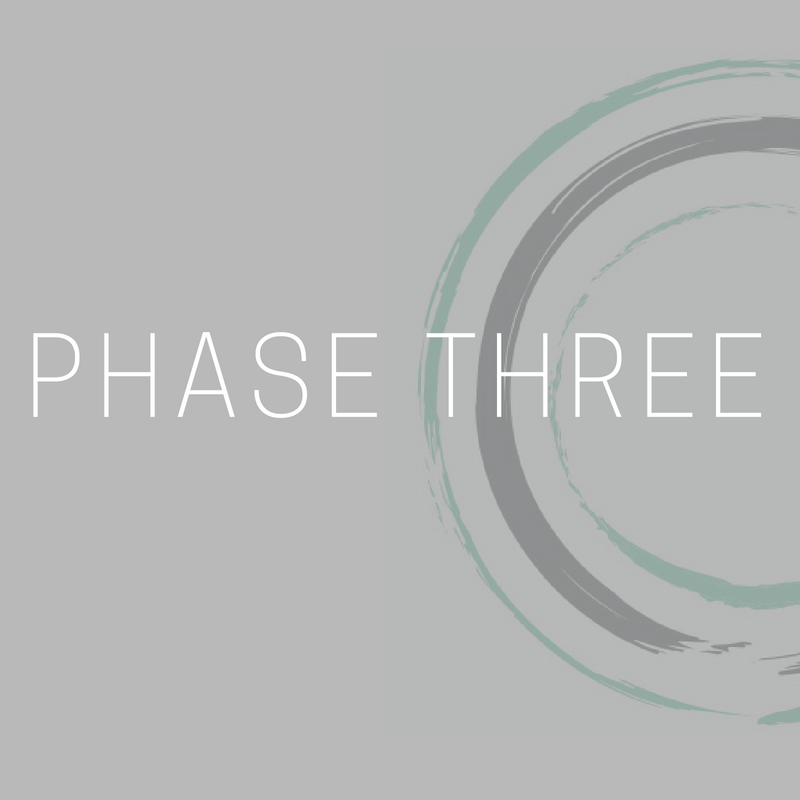 Copy of Phase One (7).png